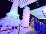 大型冰雕展神奇雨屋现货低价出租出售