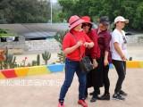 东莞南城好玩的农家乐团体出游推荐松湖生态园农家乐