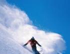 亚布力滑雪纯玩一日游 新体委滑雪场 无自费无购物
