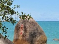 汕头-海南5天闲适、纯度假行程海岛特色游分界洲+大小洞天+椰田古