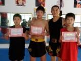 成都暑期儿童散打/武术/搏击培训班,冠军教练团