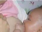 专业催乳师,乳房胀痛,,开奶,少奶,母乳喂养指导