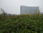 东莞全新厂房53000m 出租也可明包