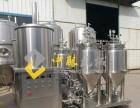 200升发酵罐酿造的纯生啤酒有哪些特点?