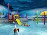 哪里有提供专业的婴儿游泳馆加盟-婴幼儿游泳馆设备多少钱