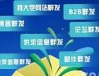湖南推广软件|长沙网络推广软件首选搜客组合营销软件