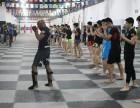 武林风搏击运动员招生火热报名中
