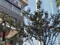 南二环皇冠假日酒店对面 970平精装办公 华融国际