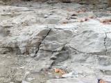 礦山開采破石劑