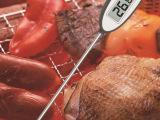 烧烤烹饪数字食品温度计、烧烤叉食品测试温度计、食品工业探针