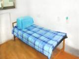学生床单批发  学生宿舍单人床单被罩三件套  床上用品批发