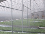 [潍坊]可信赖的温室大棚配件生产厂家|山东几字钢日光温室大棚