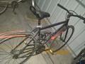 G7变速死飞自行车女式单车男款公路赛自行车