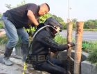 连云港管道清淤CCTV检测 封堵气囊潜水打捞