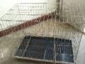 可折叠式宠物笼