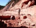 武定县红沙石矿山开采权转让