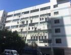 虹钦园243平米出租,有装修隔断,随时可以入住办公
