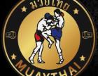温州中泰泰拳搏击俱乐部