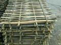 长期回收旧竹片,旧毛竹!长期出售竹片 毛竹 竹梯!