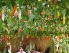 仙游永恒旅游开发有限公司加盟 种植养殖