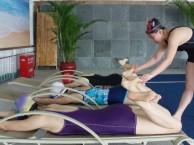 江门儿童游泳培训班哪家好成人儿童游泳培训中心