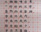 深圳龙华大智慧书法美术培训
