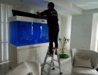 深圳地区专业清洗护理鱼缸 鱼缸订做鱼缸出租等服务