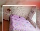 华南远洋公寓欧式大床房