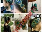 孔雀羽毛饰品店出售各种孔雀羽毛饰品