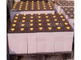 质量较好的叉车电池百思特电源供应江苏叉车蓄电池