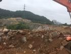 专业挖掘机作业出租平地挖地