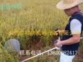 割稻神器 割稻神机各县代理招商 山区用的割稻神器