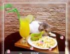 贝斯特猫咪咖啡馆,主题猫咪下午茶,另有各国猫咪出售