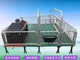 金碼畜牧設備 母豬產床 熱鍍鋅全復合產保一體雙體產床