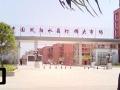凤阳工业园区水晶灯大市场 商业街卖场 21.3平米