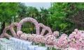 《刘诗诗吴奇隆同款》泉州户外婚礼策划婚庆公司