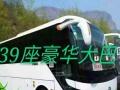 郑州大巴中巴车租赁,旅游用车 婚庆用车 长短途出租