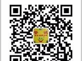 广州誉诚连锁家政大石分店 提供可靠保姆月嫂育婴师