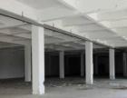 濠江区南山湾工业区一至2层混凝土结构2万多平出租