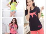 2014夏季新款韩版PINK豹子短袖两件套 女 夏天短裤短袖休闲