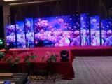 惠州春天礼仪开业活动策划礼仪庆典灯光音响春季车展物料租赁