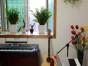 重庆乐之乐钢琴培训 吉他 架子鼓 音乐,其实很简单