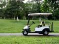 阿童木高尔夫球车