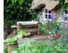 园林造景、水景假山设计制作、假树绿植、施工