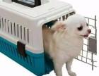 郑州宠爱宠物速运全市较低