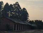 马耳山 仓库 800平米
