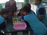 全脑沙盘作文是专业从事小学生作文教学研究作文教材研发武汉加盟