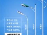 甘肃新农村太阳能路灯 4米5米6米路灯厂家直销
