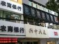 东方红广场 兴中大厦 517平方大开间 可办公
