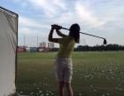 高尔夫球初学入门课程 送球杆